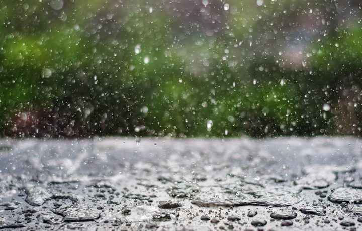 Hari Ke-8 Hujan Bulan Juni Festival